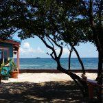 Privé-eilanden: Bird Island 2
