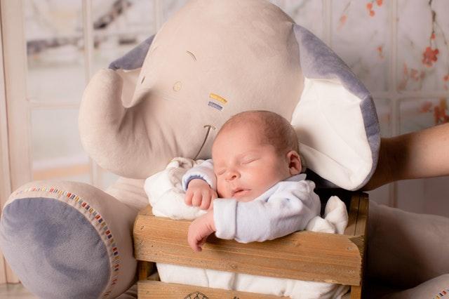 Een newborn fotoshoot