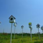 Verhuisplannen - To do's en kostenposten