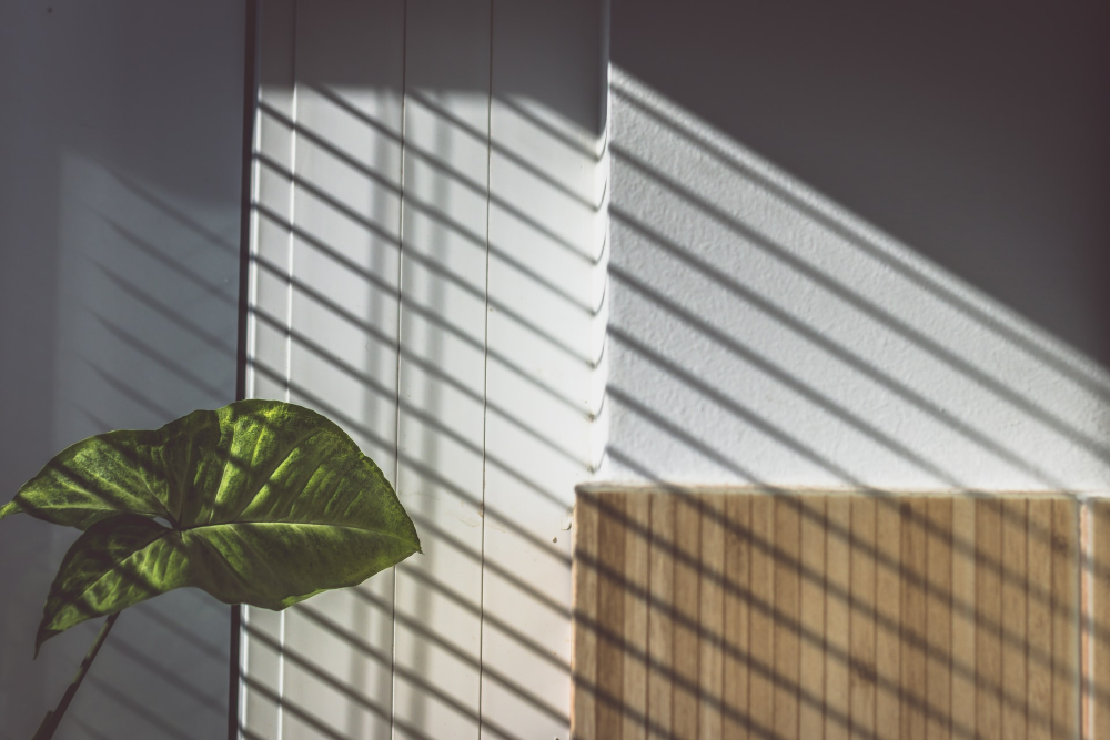 De beste jaloezieën voor in huis – wat past bij jouw woonstijl?