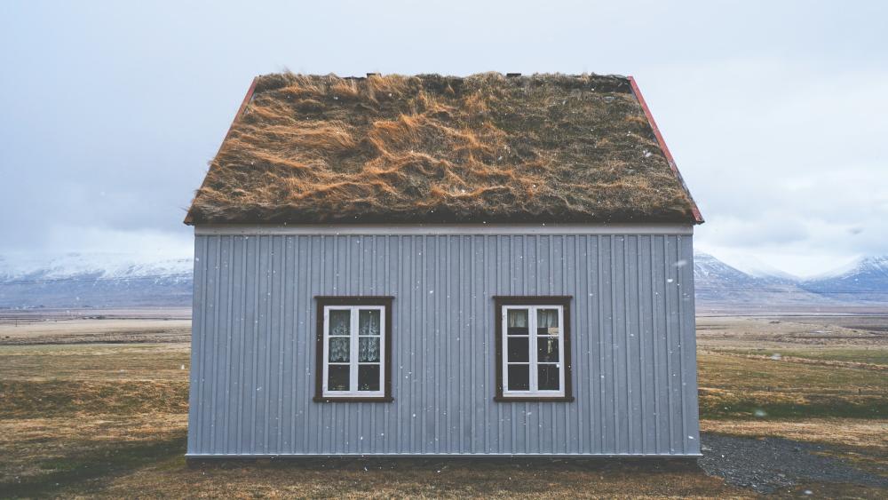 Duurzaam wonen? 8 tips voor een eco lifestyle in huis