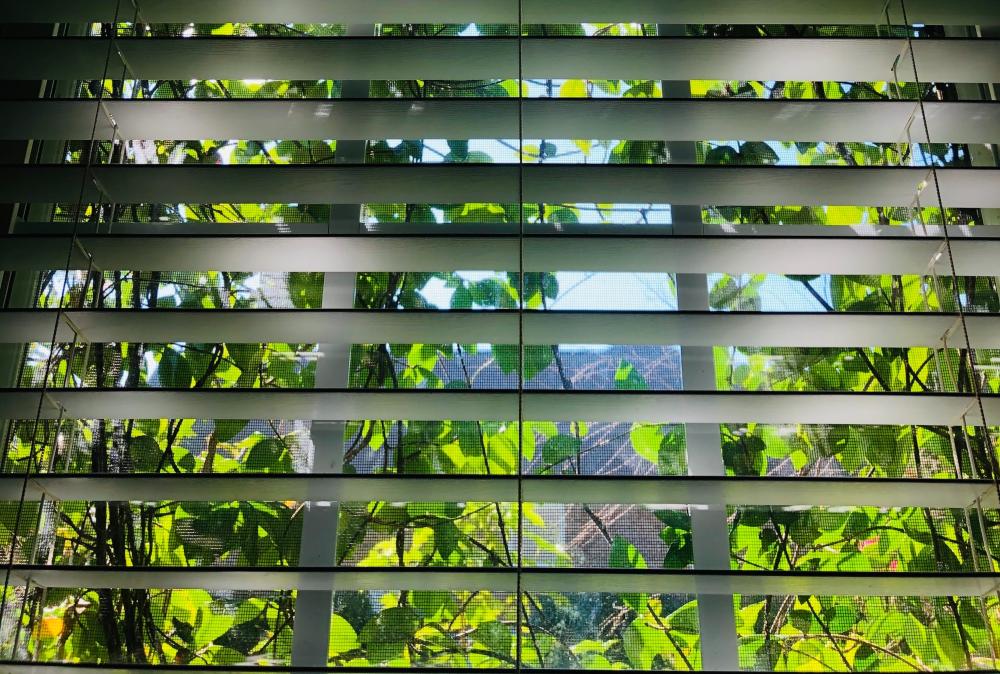 Creëer een natuurlijke look met bamboe lamellen