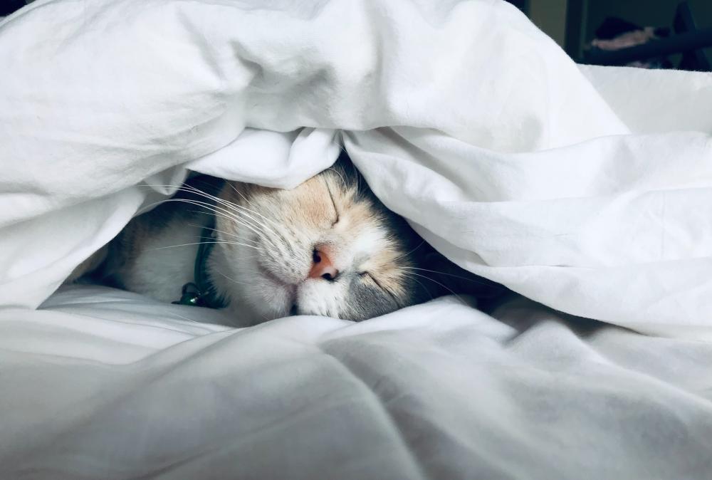 Welk matras is het best voor jouw slaaphouding?